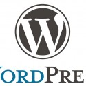 Understand Your WordPress Limitations.